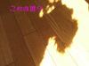 2008_0321_21