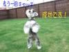 2008_0912_81